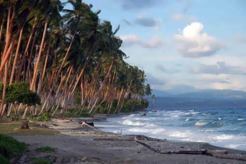 Solomon Islands Huang
