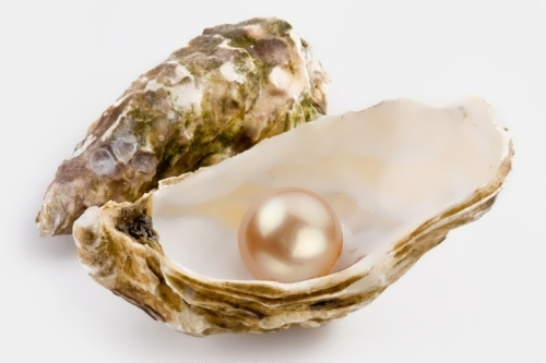 June — Pearl (Health)