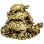 Three tortoises