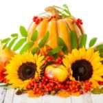 Autumn – time for harvest