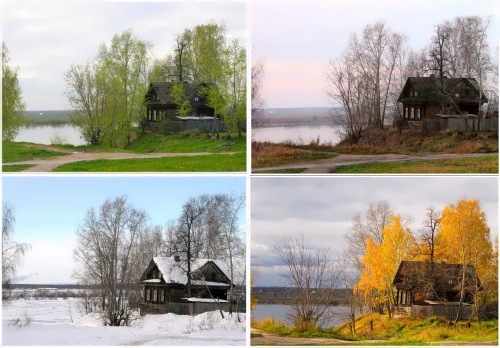 Different seasons in one picture