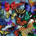 Butterflies – flying flowers