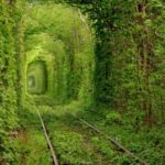 Green railroad