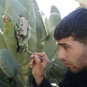 Pictures on cacti by Ahmad Yaseen