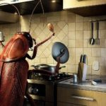 Cockroach – Indestructible Insect