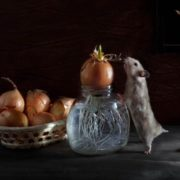 Hamster and onion