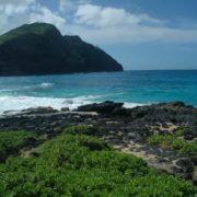 Charming Hawaii