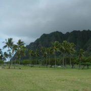 Incredible Hawaii