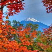 Fujiyama in autumn