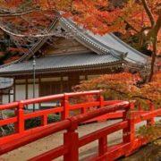 Amazing Japan