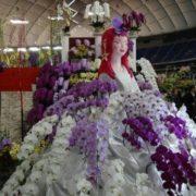Japan Grand Prix International Orchid Festival