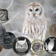 Owl on coins
