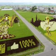 Rice paddy art. Photo Kyodo
