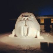 Ice sculpture of walrus