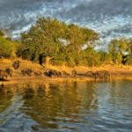Botswana – Jewel of the Kalahari
