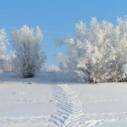 Frosty Yakutia