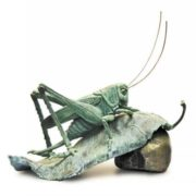 Gorgeous grasshopper
