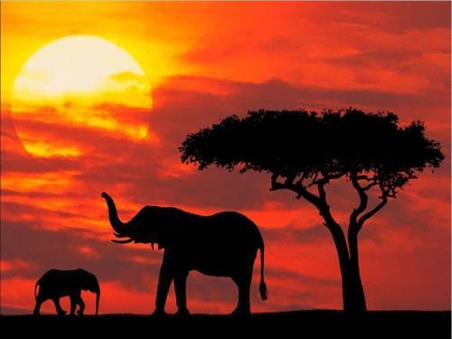 Kenya - Cradle of Humanity