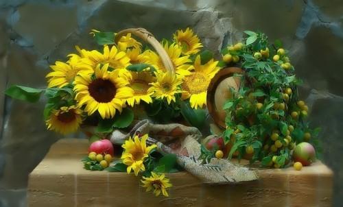 Pretty sunflowers