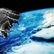 Tardigrada in space