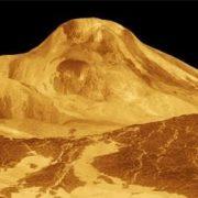Amazing Venus
