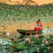 Lake of Lotuses (Mui Ne)