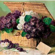Paul de Longpree. Invoice of Violets, 1895