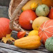 Kinds of pumpkins