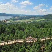 Lake and ecological path Lipno