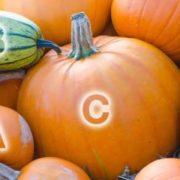 Vitamins in the pumpkin