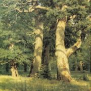 Ivan Ivanovich Shishkin. Oak trees. Evening