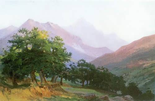N. Ge. Oaks in the Carrara Mountains