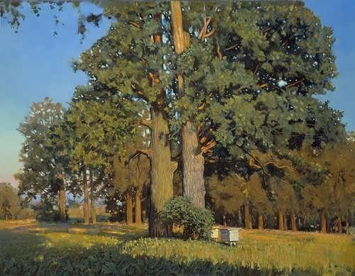 Nikolay Anokhin. Old oaks
