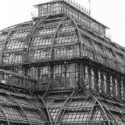 Palm greenhouse in Vienna