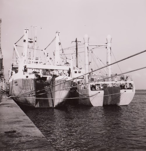 Ships of the fishing fleet in the port