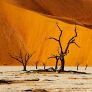 Awesome Namibia