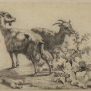 Eugene Joseph Verboeckhoven. Two goats