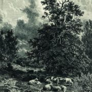 Flock of sheep on the edge of the forest. Shishkin