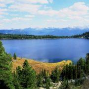 Graceful Altai