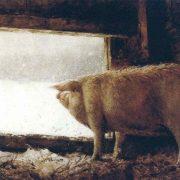 James Wyeth