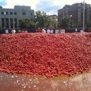 La Tomatina many tomatoes