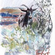 Makeev Sergey. Goat, 2012