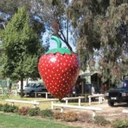 Monument to strawberry in Australia