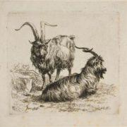 Nicolaes Pietersz Berchem. Goats, from Various Animals