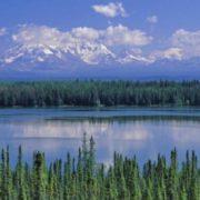 Pretty Altai