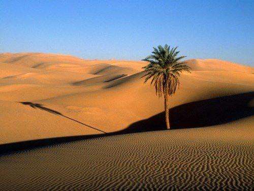 Sahara – largest desert on Earth