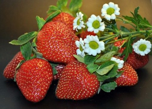 Strawberry - Luscious Dessert Fruit