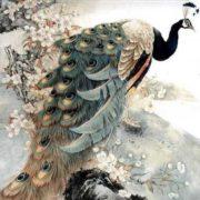Yuming Zhang