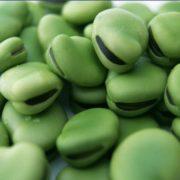 Amazing beans
