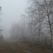Awesome fog